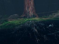 treehugger_wawona_06-1