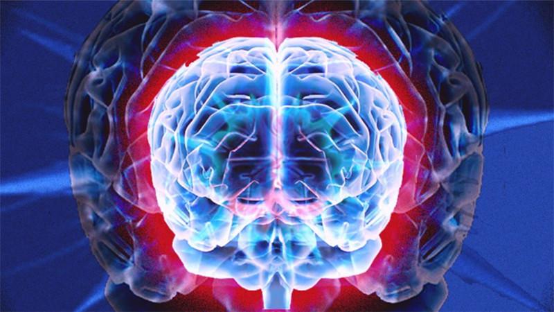 Voyage dans un cerveau humain en réalité augmentée.