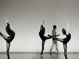 danses 2
