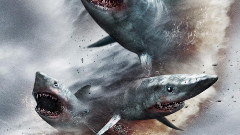 Sharknado : chassez un requin en réalité augmentée !