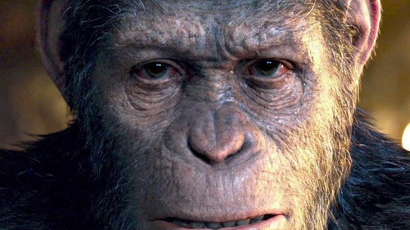La planète des singes en VR ?